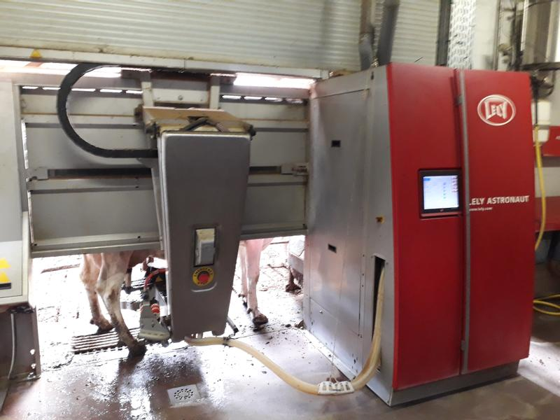 Lely A4 Manager
